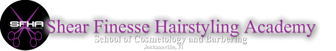 Shear Finesse Hairstyling Academy